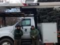 Armonk Tree Service